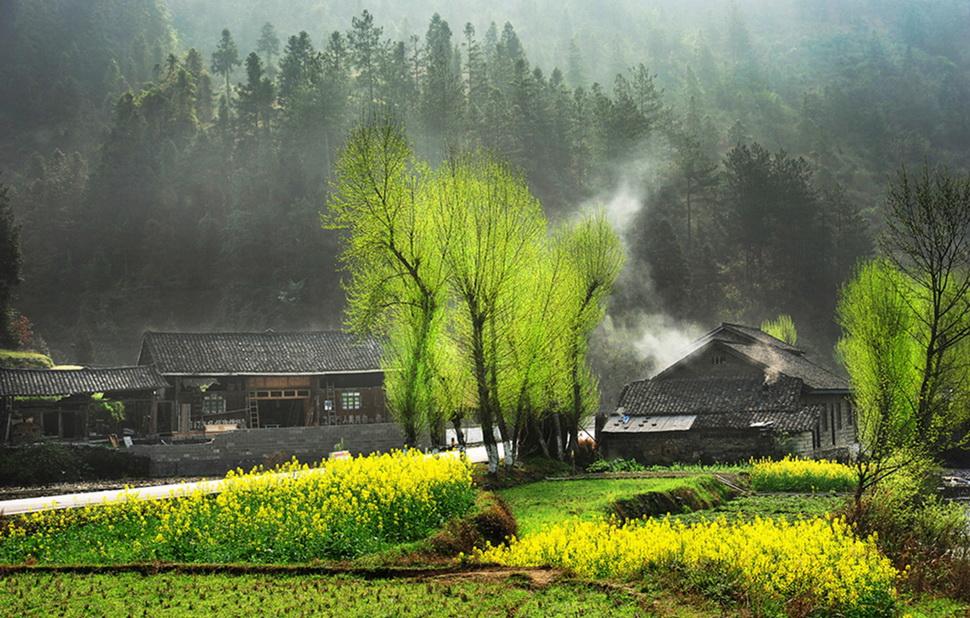 桂林会仙镇